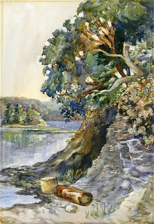 Emily Carr: Arbutus Tree (c.1909) watercolor on paper Public Domain via The Athenaeum