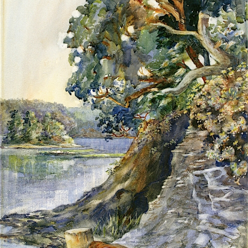 Emily Carr: Arbutus Tree (c.1909) watercolor on paper Public Domain via The Athenaeum