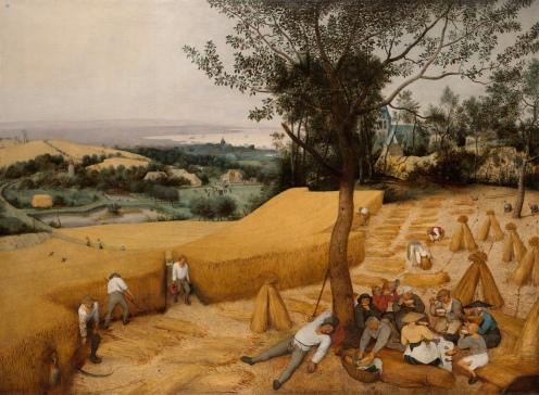 Pieter Bruegel the Elder - The Harvesters - 1565 On view at The Met Fifth Avenue in Gallery 642