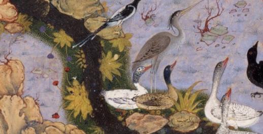 Folio 11r from a Mantiq al-tair (Language of the Birds) by Habiballah of Sava (active ca. 1590–1610) detail