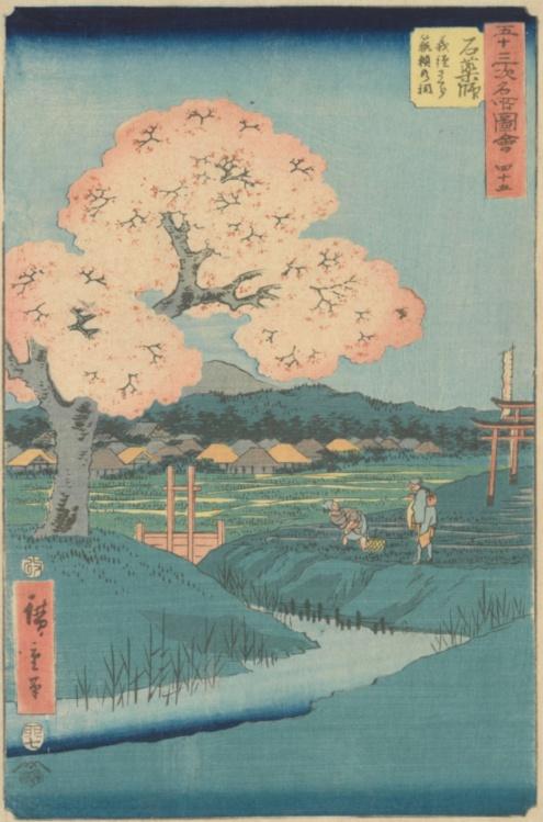 Utagawa Hiroshige, Ishiyakushi: The Yoshitsune Cherry Tree near the Noriyori Shrine, no. 45 from the series Collection of Illustrations of Famous Places near the Fifty-Three Stations [Along the Tōkaidō], 1855, Van Gogh Museum, Amsterdam