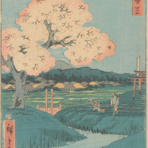 Utagawa Hiroshige, Ishiyakushi: The Yoshitsune Cherry Tree near the Noriyori Shrine, no. 45 from the series Collection of Illustrations of Famous Places near the Fifty-Three Stations [Along the Tōkaidō], 1855, Van Gogh Museum, Amsterdam
