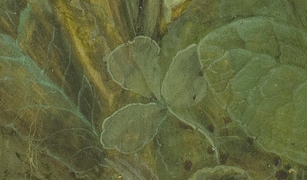 20Screenshot_2018-11-25 Albrecht_Dürer_-_Tuft_of_Cowslips_-_Google_Art_Project jpg (JPEG Image, 3574 × 4145 pixels)